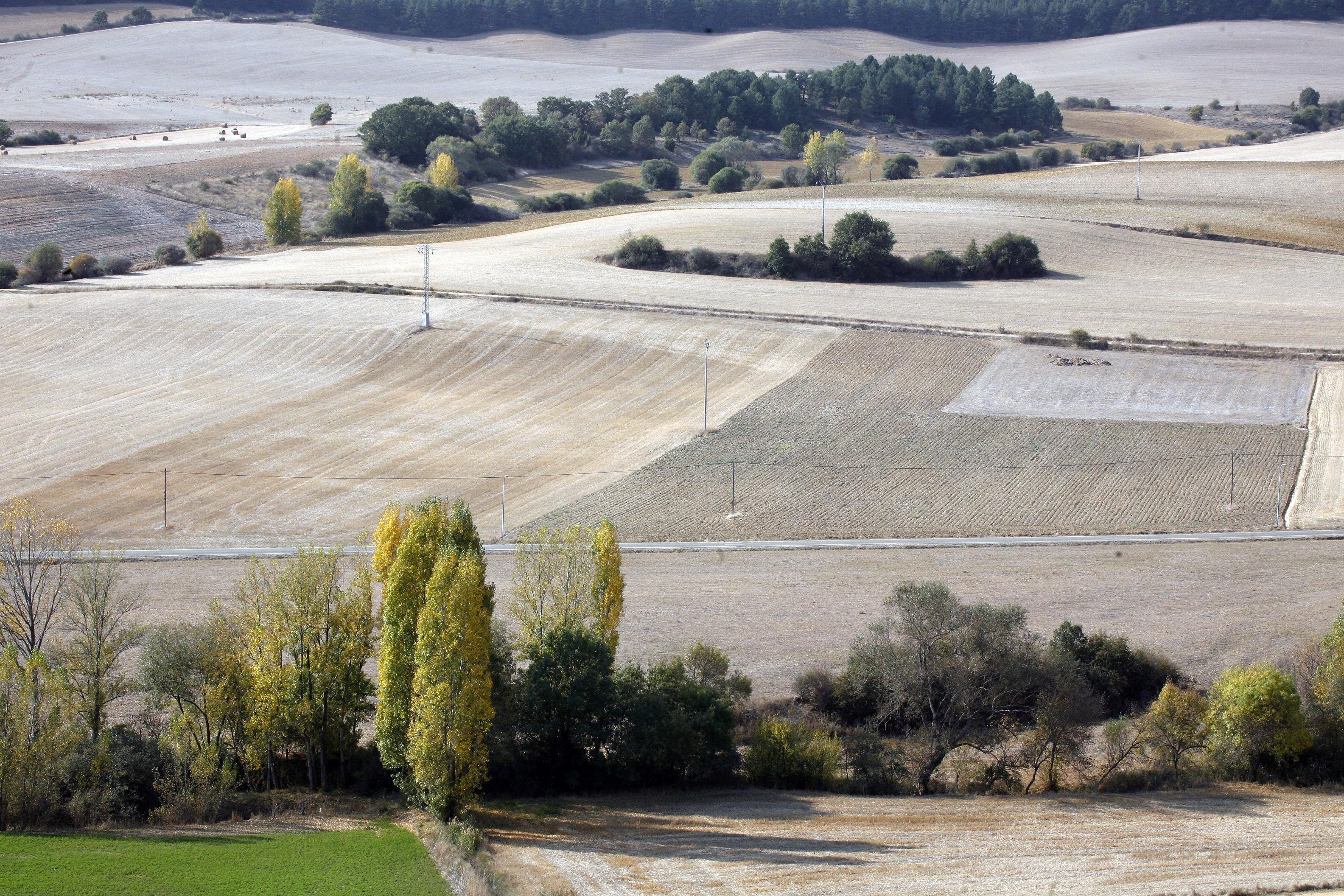 B uenavista-paisaje (10)