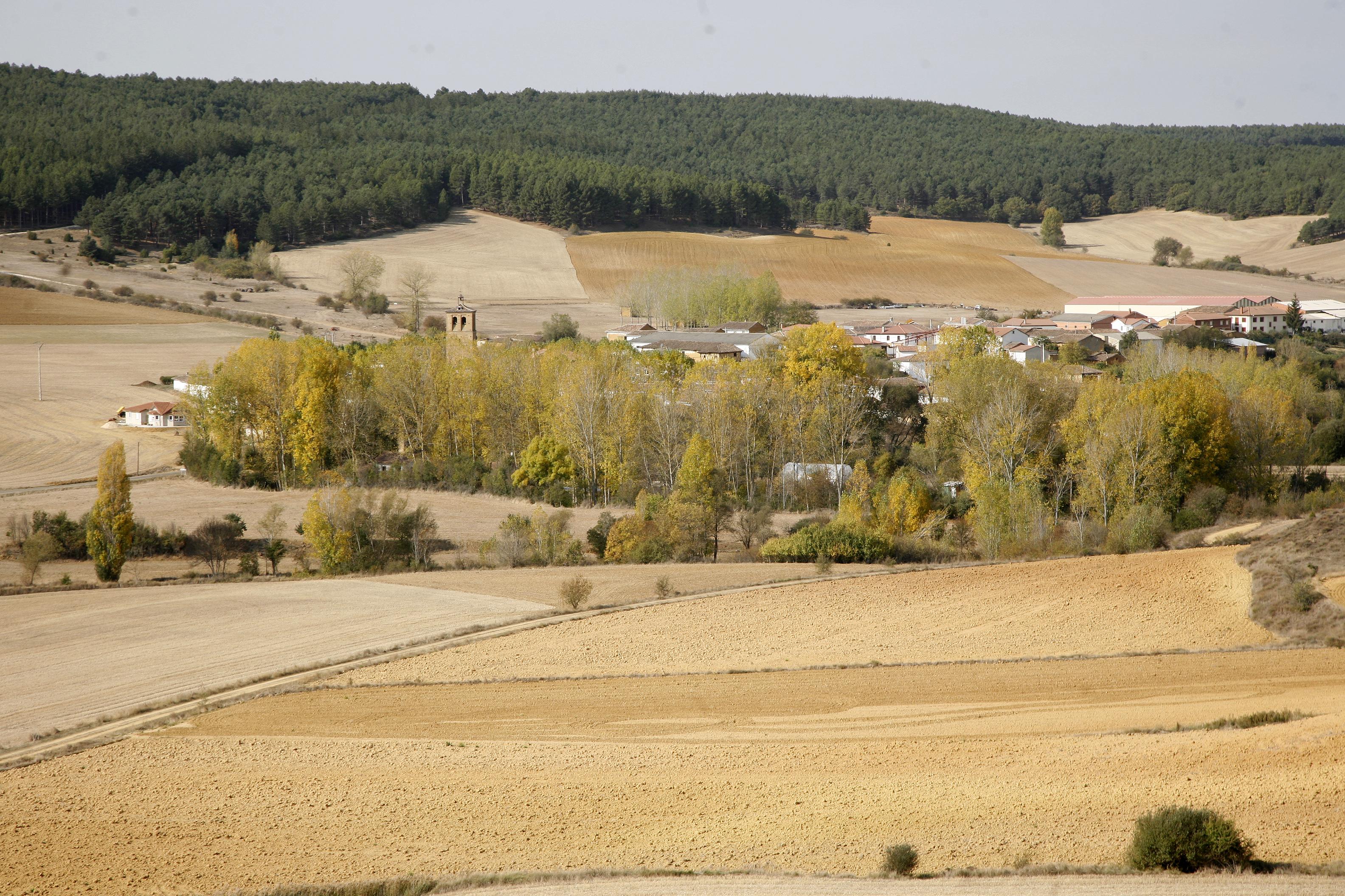 B uenavista-paisaje (2)